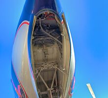 On the Nose -- DC-7B by njordphoto