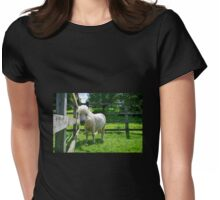 Solo The Shetland Pony Womens Fitted T-Shirt