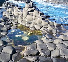 Giants Causeway - Northern Ireland by Claire Sidebotham