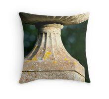 Classical simplicity Throw Pillow