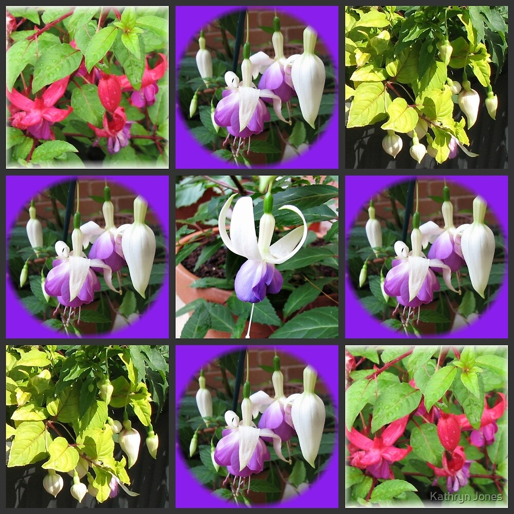 Fuchsia Belles Collage by kathrynsgallery