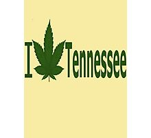 0240 I Love Tennessee  Photographic Print