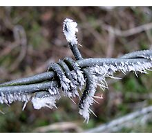 Icy wire Photographic Print