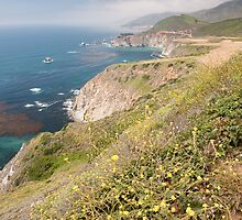 Big Sur Coastline by Chris Tarling