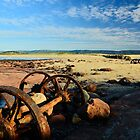 Rusting Away by Terry Everson