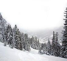 Winter on the Sorgschrofen by da-phil