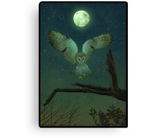 Owl Hunt Canvas Print