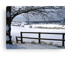 The Stillness and Starkness of a White Winter Canvas Print