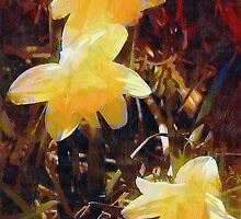 Daffs Gone Goth by RC deWinter