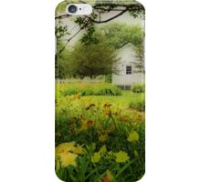Daylilies in the Garden iPhone Case/Skin