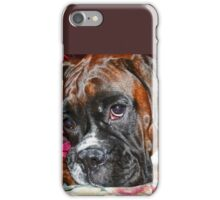 Dreamy -Boxer Dogs Series- iPhone Case/Skin