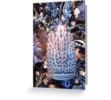 Rock Lobster oo aahh Greeting Card