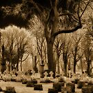 Otherworldly Graveyard by gothicolors