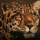 Jaguar by Rayven Collins
