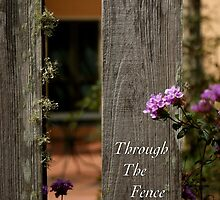 Through The Fence by JpPhotos