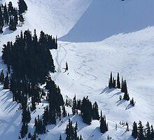 Ski Tracks by skreklow