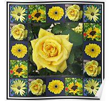 Golden Beauties Collage Poster