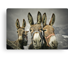 Are we getting famous ? Canvas Print