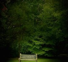 Lonely Bench by ParisDeLaria