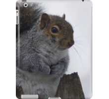 Oh So Cold iPad Case/Skin