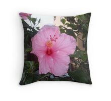 Springs Pink Delight, March Throw Pillow