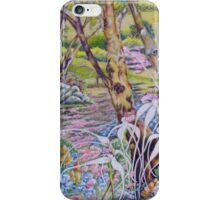 Wandering through Nature's Garden iPhone Case/Skin