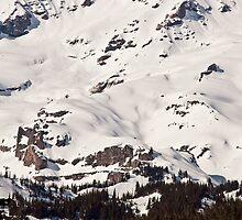 Mt. Rainier Snowscape by Barb White