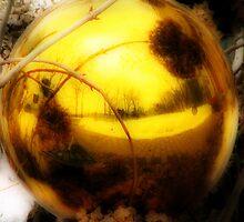Golden Globe by shutterbug2010