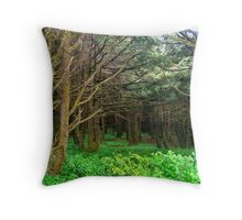 Into the Forest at Neptune Beach...Yachats, Ore Throw Pillow