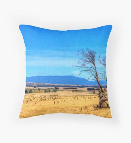 A lonely tree near Evandale, Tasmania Throw Pillow