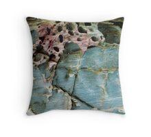 Beach Rocks 8 Throw Pillow