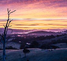 Sunrise over Goulburn River, Australia by Nils Versemann