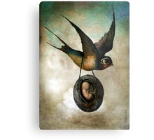 Precious flight Metal Print