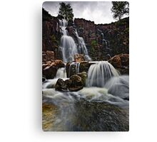 Bleabeck Force Canvas Print