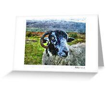 Feeling Sheepish Greeting Card
