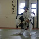 Aikido by milesphotos