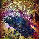 """Black Bird"" by Laura Carl"