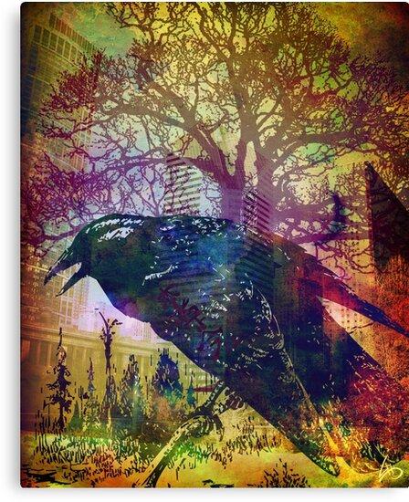 """""""Black Bird"""" by Laura Schneider"""