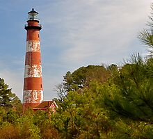 The Lighthouse of Assateague Island by Monte Morton