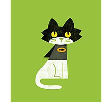Mark the bat-cat Photographic Print