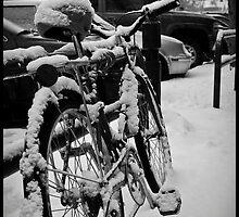 Snowed In by Arberndt