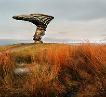 The Singing Ringing Tree - Burnley by SteveMG