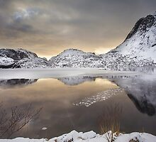 Winter Gold by John Dekker