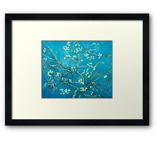 Almond blossoms  Vincent Van Gogh Framed Print