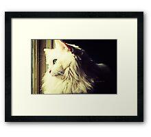 Mikey  Framed Print