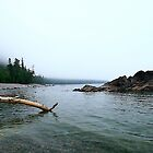 Lake Superior Log in the water by Eros Fiacconi (Sooboy)