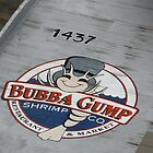 Bubba gump by DanaSchultz