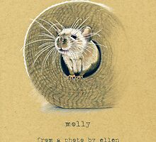 Molly by Revelle Taillon