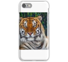 Eye of the Tiger. iPhone Case/Skin