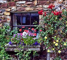 Cottage Window by Lynne Morris